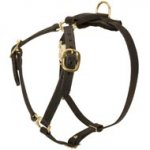 Y-Shaped Leather English Bulldog Harness for Tracking and Training