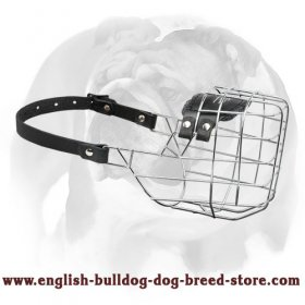 'The Silencer' Wire Cage English Bulldog Muzzle With One Strap