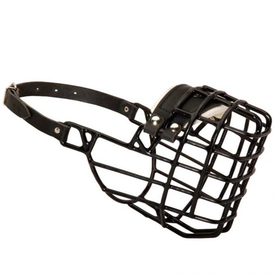 Frost-Resistant Wire Cage English Bulldog Muzzle with One Adjustable Strap - Click Image to Close