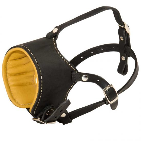 Snout Short Leather English Bulldog Muzzle Padded with Nappa Leather