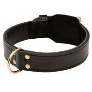Training 2 Ply Leather English Bulldog Collar