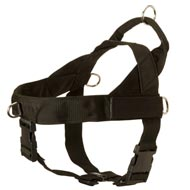 English Bulldog Harness Nylon with Patches