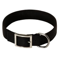 2 Ply Nylon English Bulldog Collar