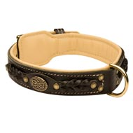 English Bulldog Leather Collar Braided