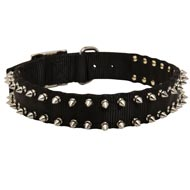 English Bulldog Nylon Collar Spiked