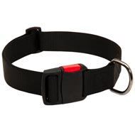 Any-Weather Nylon English Bulldog Collar With Quick Release Buckle for Training and Walking