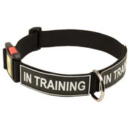 All Weather Nylon English Bulldog Collar with ID Patches