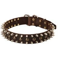 3 Rows Leather Spiked and Studded English Bulldog Collar