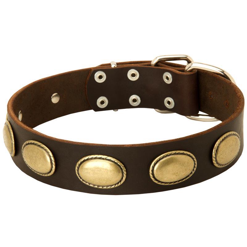 Designer Leather English Bulldog Collar with Oval Plates [C103#1131 ...