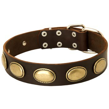 Fashsion Leather Collar with Vintage Plates