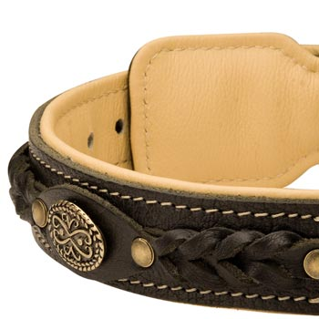 Leather Walking Fashion Collar for English Bulldog