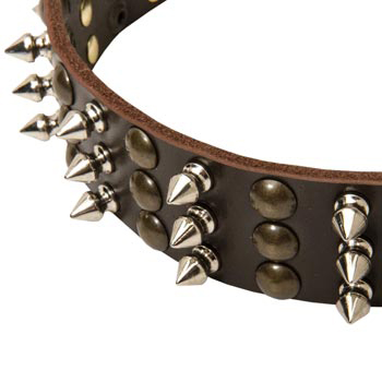 3 Rows of Spikes and Studs Decorative English Bulldog  Leather Collar
