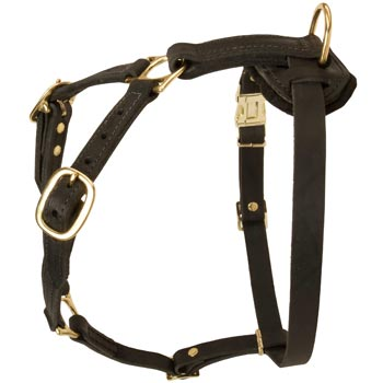 Tracking Leather Dog Harness for English Bulldog