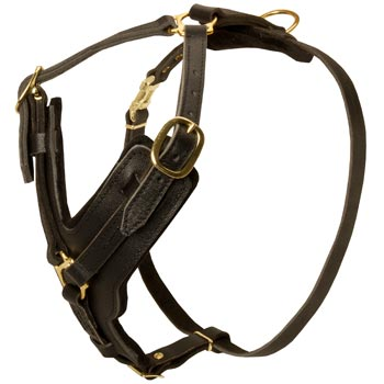 Comfortable Y-Shaped Leather Harness for English Bulldog Attack  Training